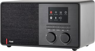 Pinell Supersound 301