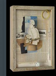 Birds of a Feather – Joseph Cornell's Homage to Juan Gris McKinley Mary Clare Innbundet